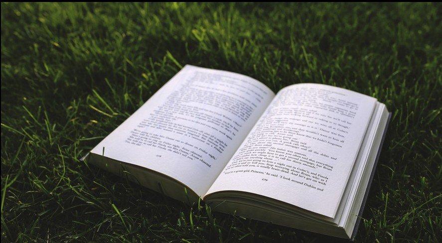 nature-grass-green-book-large