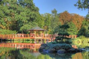 wroclaw-atrakcja-ogrod-japonski