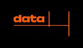logo-data-consult